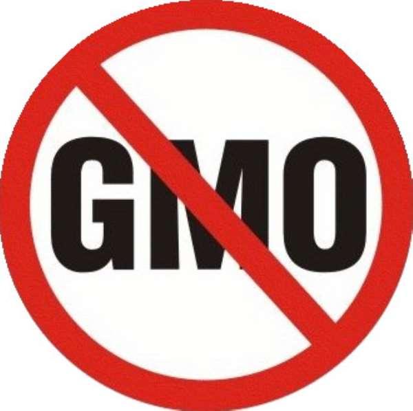 Hormones Matter! Kick GMO Out!!