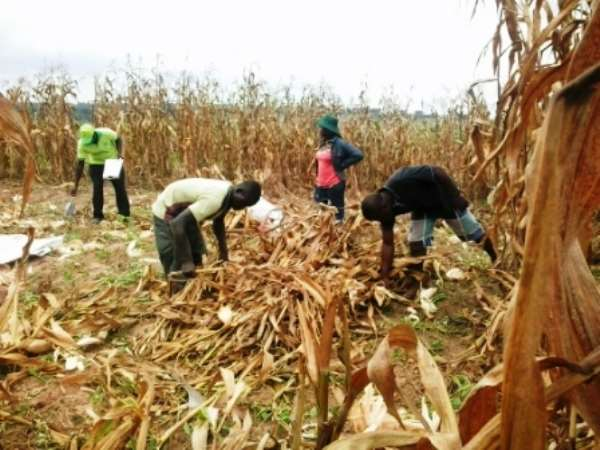 AGRICOOP Legal Consultant Wants Special Priority For Agriculture Co-Operatives