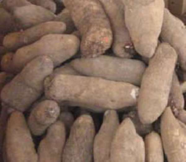 We Need Support To Complete Yam Market Project----Atebubu-Amantin DCE