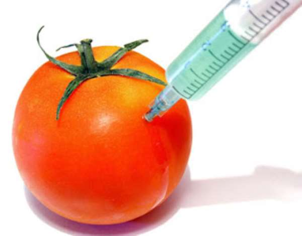 Genetically Modified Crops: The Solution To Global Food Insecurity
