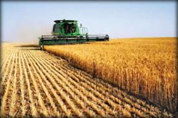 Agriculture affirmed as vital in leading Africa's development