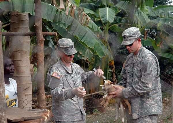 Description:   Africa Partnership Station (APS) volunteers, U.S. Army Capt. Brian Smith and U.S. Army Specialist Steven Mraz both assigned to the 64th Medical Detachment (Veterinary Service) inoculate a pair of baby goats.