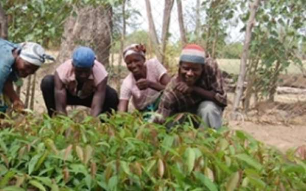 Farmers demand investment in agric extension services