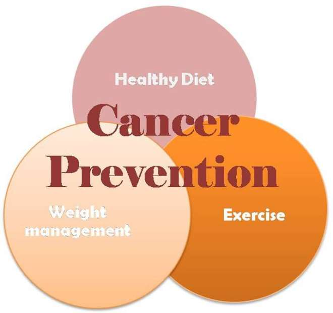 122202085733-wcsevihuto-cancer-prevention-1
