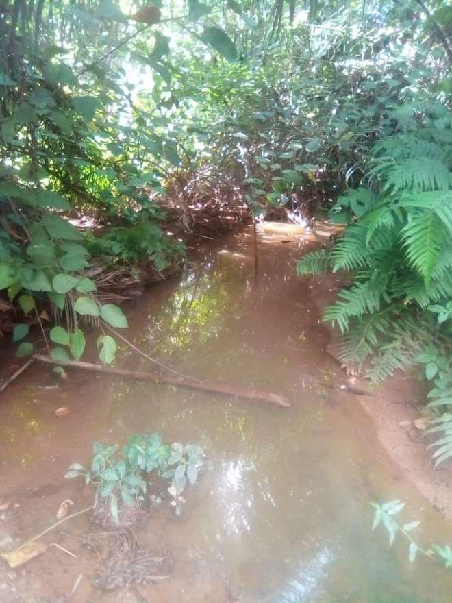 7212019115916 m6htk8v331 river stream2