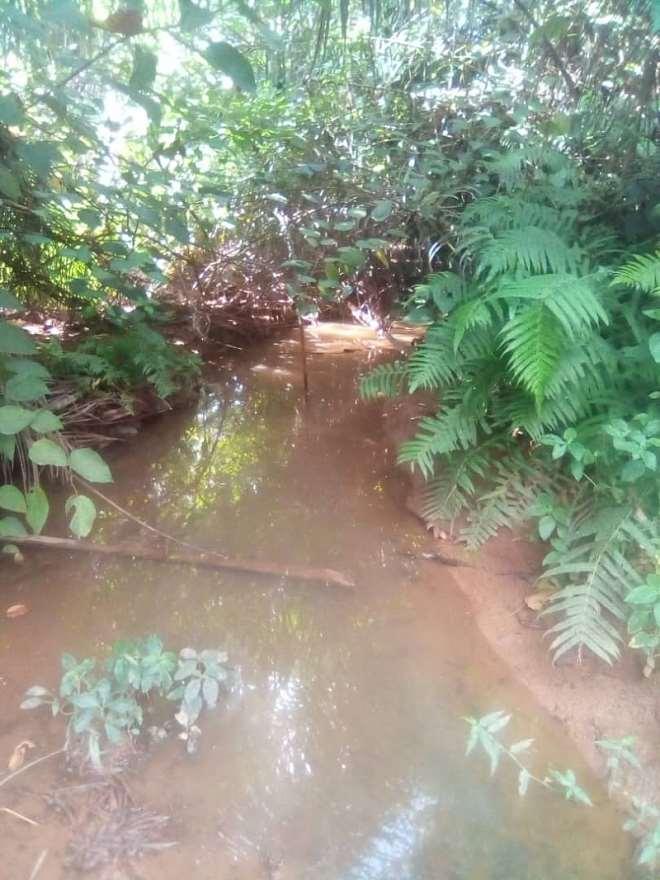 7212019115916 rvmxpcb553 river stream