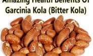 Bitter Kola:  Natural Eye Drop for Glaucoma Patients; fact or fiction?