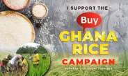 Can Market Forces Work For Ghana's Rice Farmers?