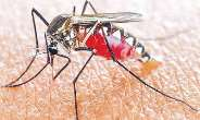 At The Crossroad Of Malaria Control