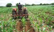 Raising Ghana's Land Productivity Will Boost Economy, Incomes - Report