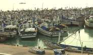 Closed Fishing Season: We're Considering Calls For Extension – Afoley Quaye