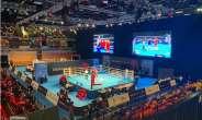 IOC Boxing Taskforce Suspends European Qualifier In London