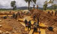 Ghana's Triple Whammy—Political-Vigilantism-Galamseyism-Cum-Land-Guard-Syndrome