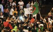 AFCON 2019: Celebrations Marred By Violence After Algeria's Semi-Final Win