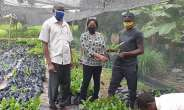 Tain District Assembly Supports Farmers WithCashew Seedlings