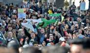 As the coronavirus has swept the world, the Algerian government banned demonstrations while Hirak protesters independently suspended rallies on public health grounds  .  By RYAD KRAMDI (AFP/File)