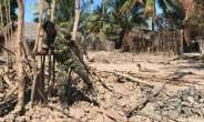 Islamist militants have attacked and burned villages in Mozambique's northern Cabo Delgado region.  By Joaquim Nhamirre (AFP/File)