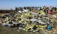 The 2019 crash of the Nairobi-bound Boeing 737 MAX six minutes after takeoff killed all 157 people on board.  By Michael TEWELDE (AFP/File)