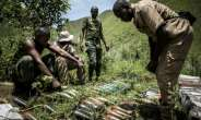 The DR Congo military operation against Rwandan Hutu rebels in the east of the country has been welcomed by neighbouring Rwanda.  By JOHN WESSELS (AFP)