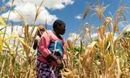 The UN expert said eight million people would be affected by the end of the year.  By Jekesai NJIKIZANA (AFP/File)