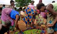 A Better Gender Agenda: Women's Primary Setback In The African Tradition