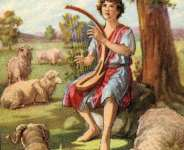 Poetry: The Church Needs To Shepherd Even The Hurt Sheep