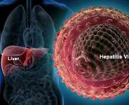 Human liver infected with Hepatitis-B