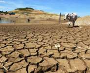 African presidents and global leaders support bold action on climate change adaptation for Africa