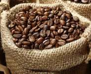 China exporting cocoa a cause for concern – COCOBOD