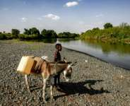 A boy stands next to a donkey loaded with jerry cans in March 2021 in the Al-Fashaqa region of Sudan's eastern Gedaref state, where tensions have risen with Ethiopia.  By ASHRAF SHAZLY (AFP/File)