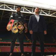 Anthony Joshua (left) has won 23 of his 24 professional fights, while Kubrat Pulev has a record of 28 victories and one loss