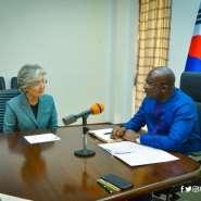 South Korean Foreign Minister Meets Bawumia