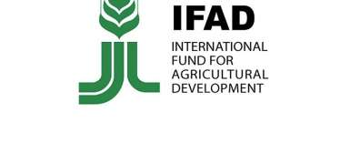 Sierra Leone, IFAD To Strengthen Partnerships, Agricultural Value Chains And Rural Finance