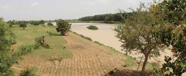 NADMO Warn Residents To Stop Farming Along The White Volta