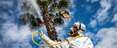 A Moroccan health ministry worker disinfects a street in the capital Rabat to combat the spread of coronavirus.  By FADEL SENNA (AFP/File)