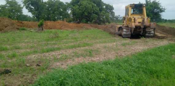 The People Of Tangasia Appeal For Help After Contractor Destroys Farms