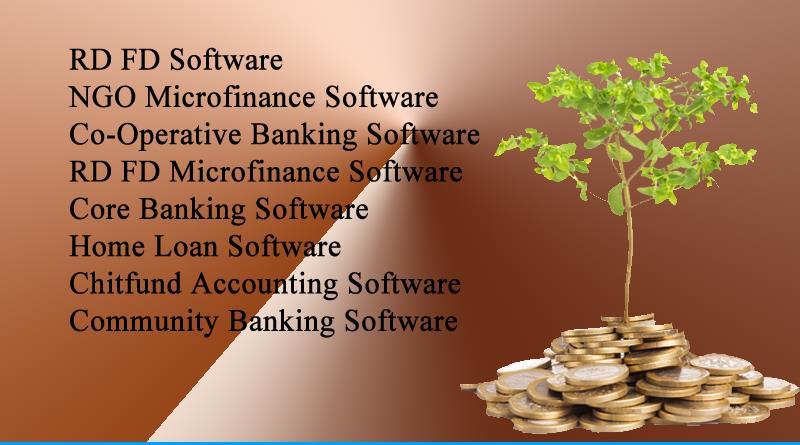 Microfinance Software2.jpg