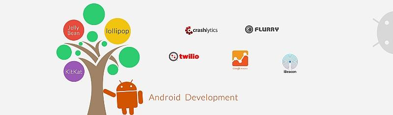 hire cost effective android application developer