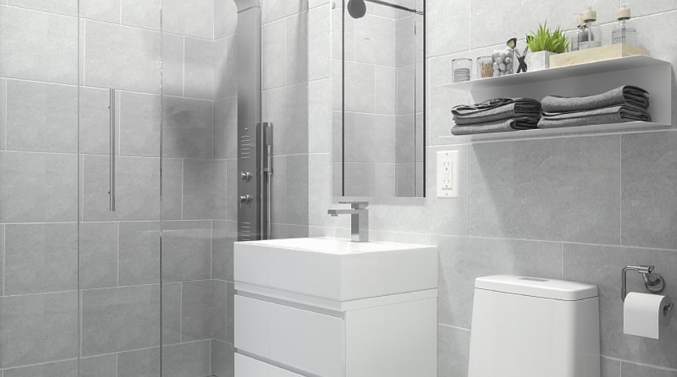 Copy of bathroom1.jpg