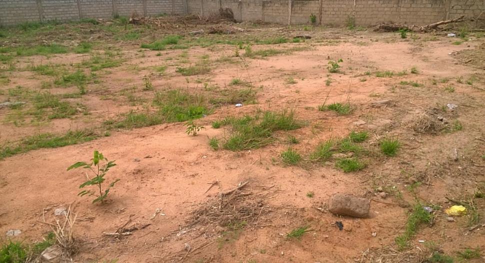 Land for lease1[1].jpg