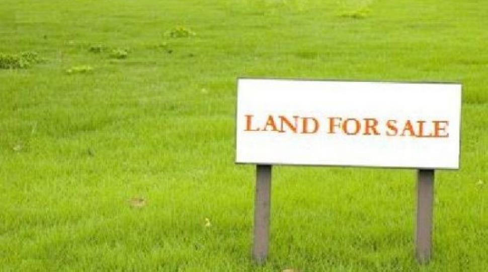 [1]land site.jpg