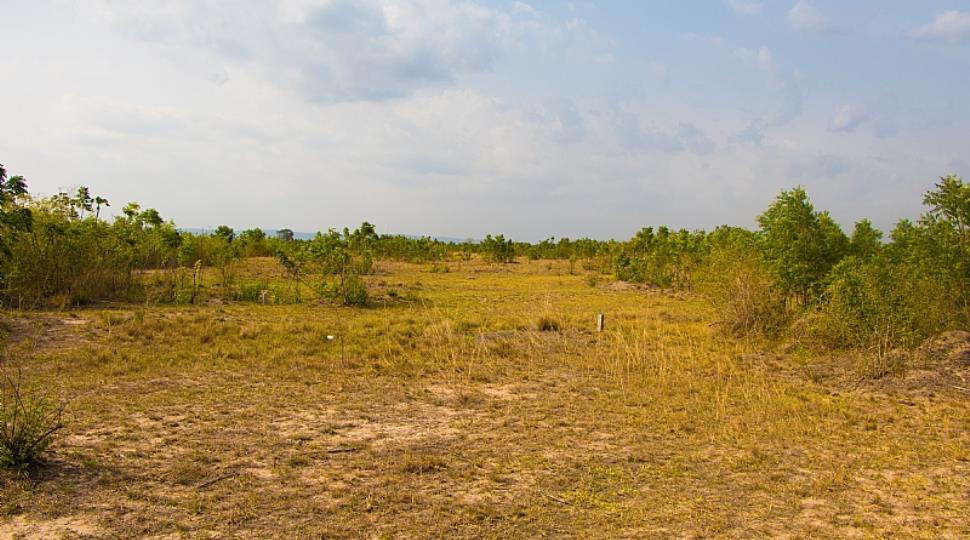 land (34 of 63).jpg