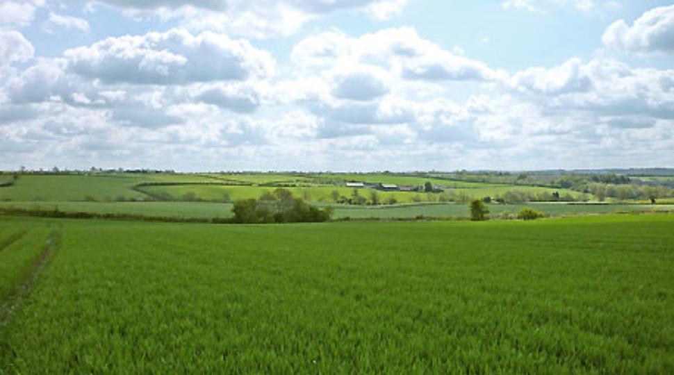 land-melton-mowbray[1].jpg