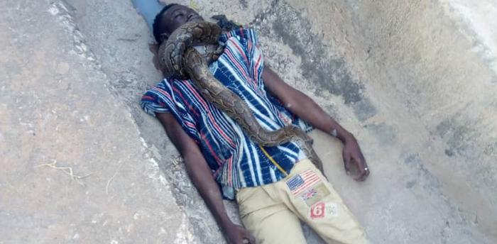 Snake Kills Sakawa Boy