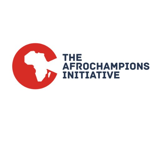 International Organisation To Support Ghanaian Entrepreneurs & Professionals