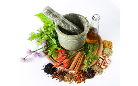 Group Want Fund To Promote Traditional Herbal Medicine Practice