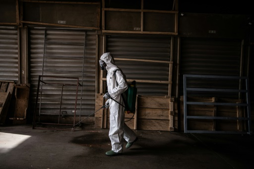 Plea for 'Marshall Plan' as pandemic hits African economies