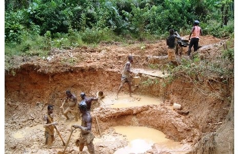 the effects of gold mining Effects of mercury and gold mining a recent survey of brazilian artisanal miners suggests that those who work with gold have weaker.