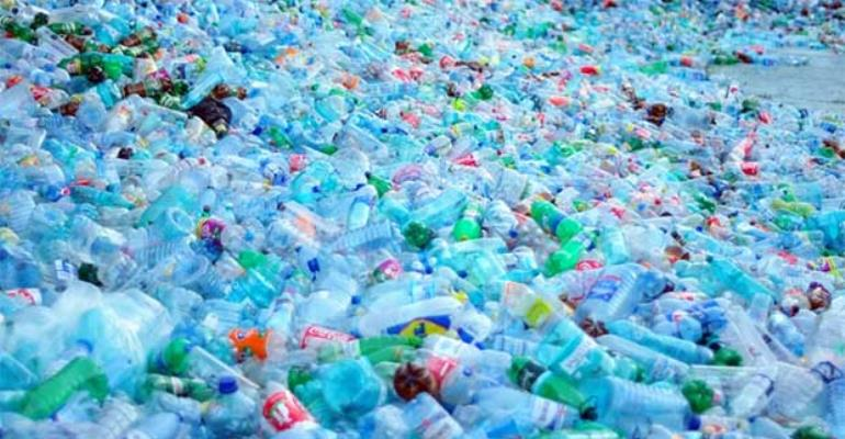 Threatened By Non-Biodegradable Plastics