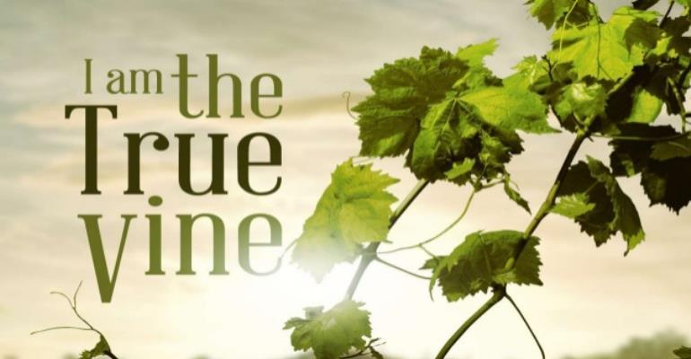 The Gardener, Vine And Branches 1 (The True Vine)